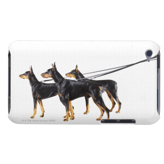 Three Dobermans on leash Barely There iPod Cover