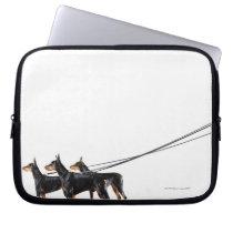 Three Dobermans on leash Computer Sleeve