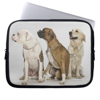 three dogs all looking to the right computer sleeve