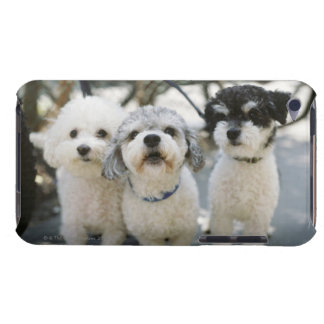 Three dogs barely there iPod case