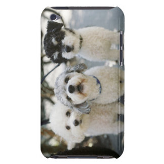 Three dogs barely there iPod cover