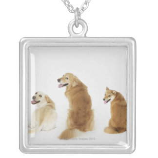 Three dogs looking at camera silver plated necklace