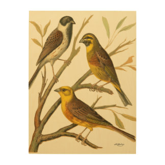 Three Domestic Birds Perched on a Branch Wood Wall Art