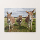 """Three Donkey's Jigsaw Puzzle<br><div class=""""desc"""">Three Donkey's in their pasture on a sunny,  fall day. This image was taken in VT (along Lake Champlain). It was taken by Debbie Quick of Debs Creative Images. If you like Debbie&#39;s work,  feel free to check out her website at: www.debscreativeimages.com</div>"""