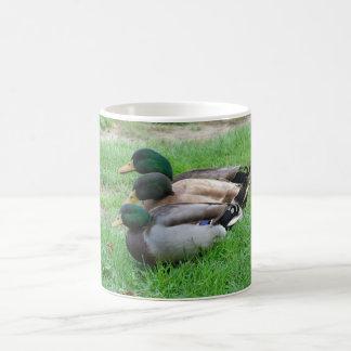 Three Ducks Coffee Mug