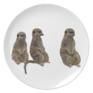Three earth males melamine plate
