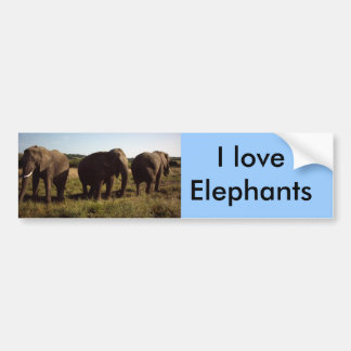 Three Elephants Bumper Sticker