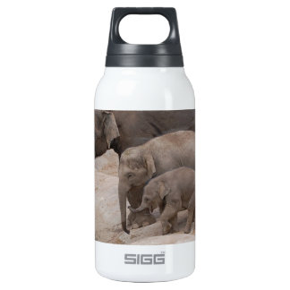 Three Elephants Insulated Water Bottle