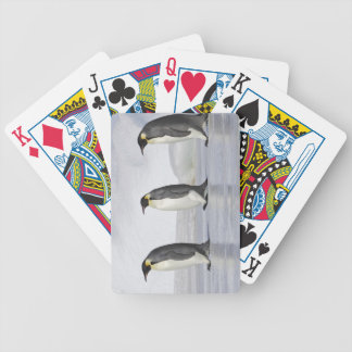 Three Emperor Penguins, Snow Hill Island Bicycle Playing Cards