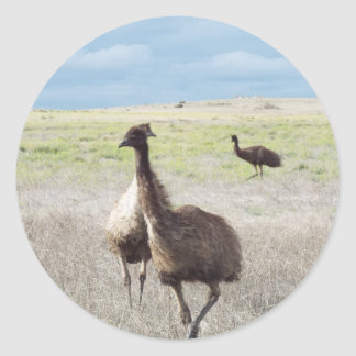 three emu's classic round sticker