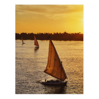 Three falukas with sightseers on Nile River at Postcard