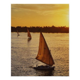 Three falukas with sightseers on Nile River at Poster
