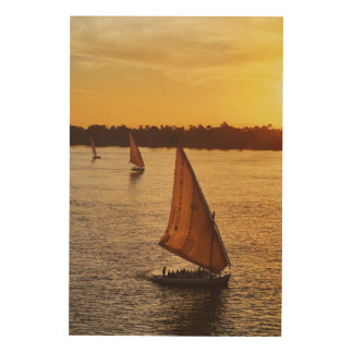 Three falukas with sightseers on Nile River at Wood Wall Art