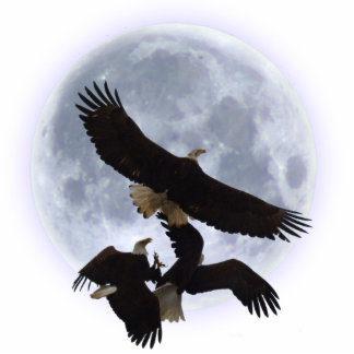 THREE FIGHTING BALD EAGLES Sculpted Gift Photo Sculpture