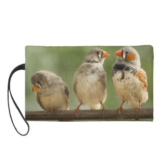 Three Finches on a Twig- Bird Photo Wristlet Clutches