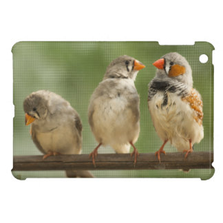 Three Finches on a Twig iPad Mini Covers