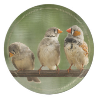 Three Finches on a Twig Plate
