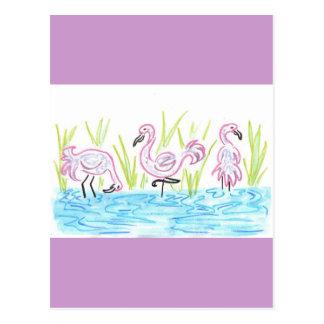 Three Flamingos Postcard