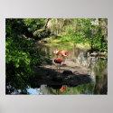 Three Flamingos print