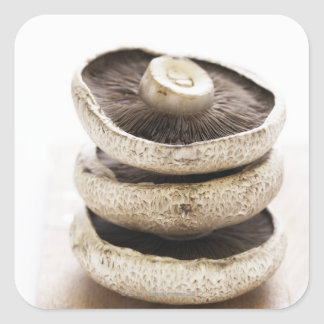 Three flat mushrooms in pile on wooden board square sticker