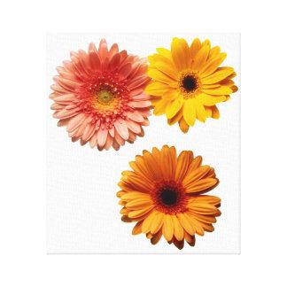 Three Flowers Canvas Print