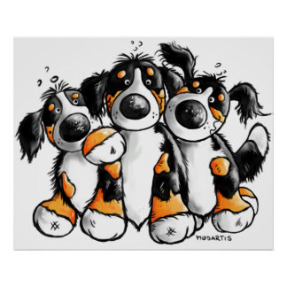 Three Funny Bernese Mountain Dogs Poster