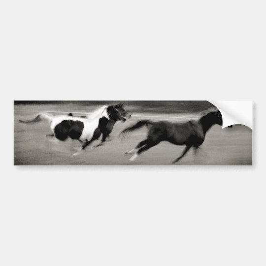 Three Galloping Horses Bumper Sticker