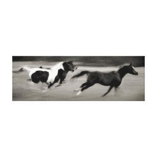 Three Galloping Horses Canvas Prints