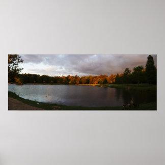 Three Geese Cooper Creek Park Panorama Poster