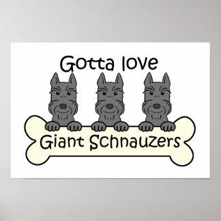 Three Giant Schnauzers Posters
