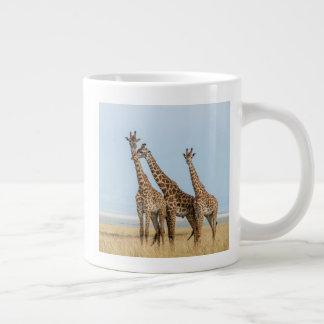 Three Giraffes Posing Large Coffee Mug
