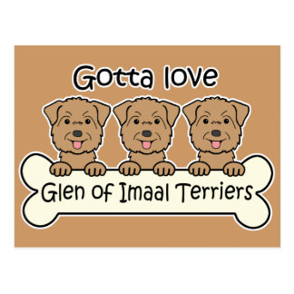 Three Glen of Imaal Terriers Postcard