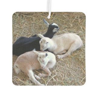 Three Goats 7889 Car Air Freshener