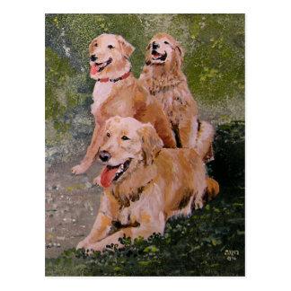 Three Golden Generations Post Cards