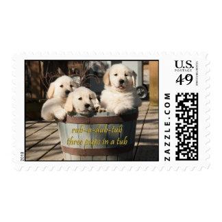 Three Golden Retriever Puppies Postage Stamp
