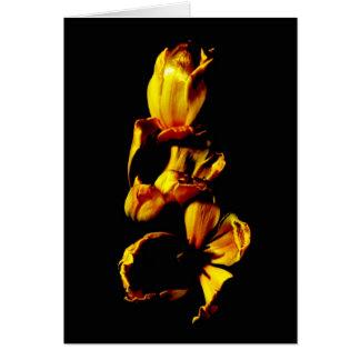 Three Golden Shiny Tulips Card