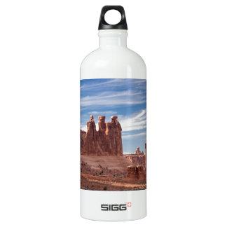 Three Gossips Water Bottle