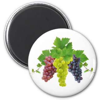 Three grapes 2 inch round magnet