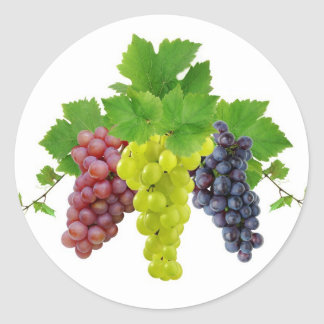 Three grapes classic round sticker