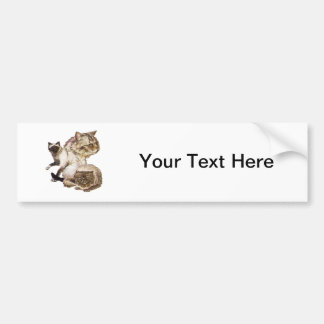 Three Gray and Golden Brown Pet Cats Sketched. Bumper Sticker