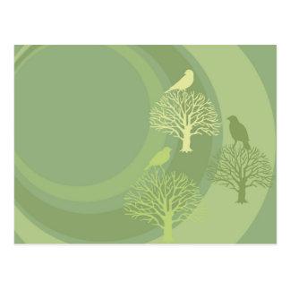 Three Green Birds All Occasions Custom Postcard