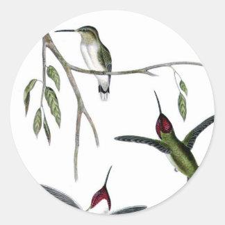 Three Green Hummingbirds Classic Round Sticker