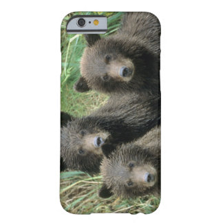 Three Grizzly Bear Cubs or Coys (Cub of the Barely There iPhone 6 Case