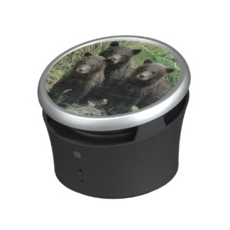 Three Grizzly Bear Cubs or Coys (Cub of the Bluetooth Speaker
