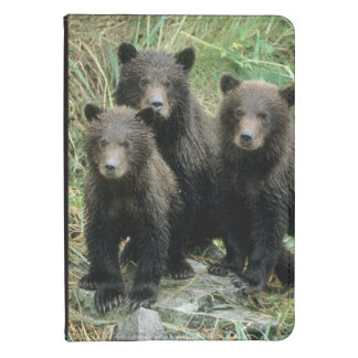 Three Grizzly Bear Cubs or Coys Cub of the Kindle Touch Cover
