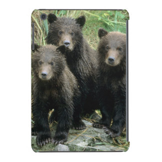 Three Grizzly Bear Cubs or Coys Cub of the iPad Mini Cases