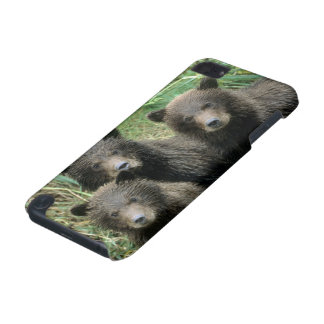 Three Grizzly Bear Cubs or Coys Cub of the iPod Touch 5G Covers