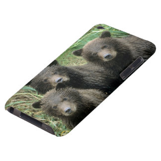 Three Grizzly Bear Cubs or Coys Cub of the iPod Case-Mate Case
