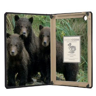 Three Grizzly Bear Cubs or Coys Cub of the iPad Mini Retina Case