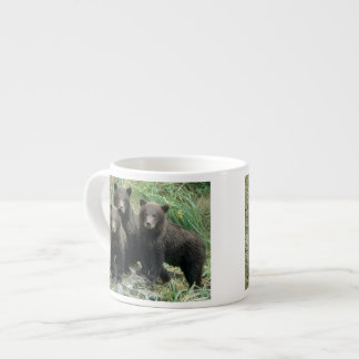 Three Grizzly Bear Cubs or Coys (Cub of the Espresso Cup